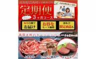 【ふるさと納税】定期便 肉 3回 お楽しみ 南国土佐のスーパーバリュー3ヶ月コース<高知市共通返礼品>