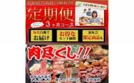 定期便 肉 3回 お楽しみ 南国土佐の肉尽くし3ヶ月コース<高知市共通返礼品>