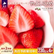 北海道浦河産いちご「やよいひめ」(250g×4P)[B13-883]