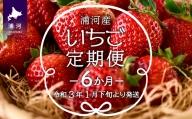 【令和4年1月より発送】毎月いちごが届くお楽しみ定期便(6ヵ月) [B13-613]
