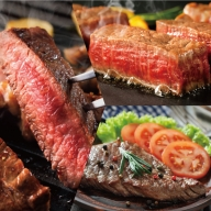 X−035.【定期便10回】佐賀牛3種ステーキ限定食べ比べ