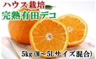 ZD6033_【ハウス栽培】完熟有田デコ(不知火) 約5kg(M~5Lサイズ混合)