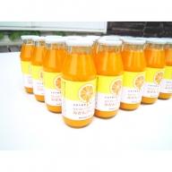 農園完熟果実絞り (美浜町産)温室みかん100%ジュース 小瓶30本セット