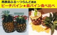 【2021年発送】パイナップル 食べ比べセット (Sサイズ)☆西表島ふる~つらんど☆