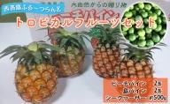 【2021年発送】トロピカルフルーツ セット☆西表島ふる~つらんど☆