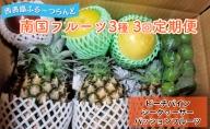【2021年発送】南国フルーツ 定期便D ☆3ヵ月定期便 フルーツ 合計3種類(ピーチパイン パッションフルーツ シークヮ—サー)