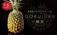 【2021年発送】GOKUJUKU-極熟‐ プレミアム スナックパイン