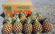 【2021年発送】西表島産 完熟ミニ ピーチパイン 約3kg(6~8玉)