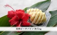 【2021年発送】ちゅら西表島産!!『ゆたか農園』完熟 ピーチパイン 約5kg