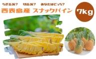 【2021年発送】☆『ちぎる派!?切る派!?』☆ スナックパイン 約7kg(10~12個入)