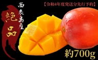 2021年発送『プレミアムな美味しさ』アップルマンゴー 約700g