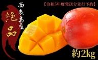 2021年発送『プレミアムな美味しさ』アップルマンゴー 約2kg