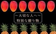 【2021年発送】☆お中元などの贈答用としても人気があります!☆『パイン&マンゴー Lセット』