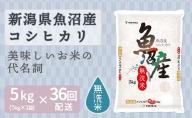 新潟県魚沼産コシヒカリ 無洗米5kg ※36回定期便 安心安全なヤマトライス H074-234