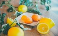 【数量限定】さわやかなレモンの香りがお口いっぱいに広がる「レモンケーキのレモンちゃん」