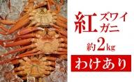 【わけあり】茹でたて紅ズワイガニ約2kg  富山 魚津