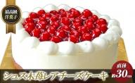 最高級洋菓子 シュス木苺レアチーズケーキ 30cm ※配送不可期間あり おいしい お取り寄せ けーき ギフト ちーず ご当地 スイーツ