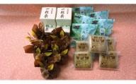 010-058上田のお菓子 真田幸村城下町セット(詰め合わせ 計21個)