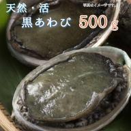 【ふるさと納税】活 天然 黒あわび 500g 舞鶴産