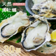 【ふるさと納税】活 天然 真牡蠣 20個入 (加熱調理用)