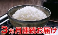 【3ヶ月連続】令和二年度新米!名田の荘コシヒカリ10kg
