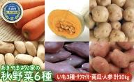あきやまさん家の秋野菜6種 計10kg