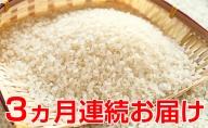 【3ヶ月連続】令和二年度新米!名田の荘コシヒカリ7kg