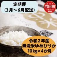 【定期便】 北海道 ゆめぴりか 無洗米 10kg 【3月~6月・4か月お届け】 令和2年産 雪中米