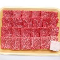 飛騨市産 5等級飛騨牛 焼肉用 500g 冬ギフト お歳暮[Q353]