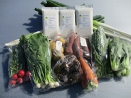 C-161 お米(2合×4袋)と季節の野菜詰め合わせ(4種類以上)