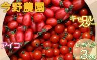今野農園で採れた「ミニトマト」3kg北海道仁木町産
