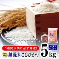 令和2年度産無洗米宮崎こしひかり5kg (トロントロン肉みそ1個付き)