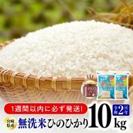 令和二年産無洗米宮崎ひのひかり10kg(トロントロン肉みそ1個付)