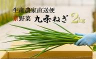 生産農家直送 京野菜・九条ねぎ 約2kg