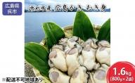 沖元水産 広島かき むき身 1.6kg(800g×2袋)