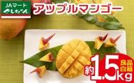 【2021年発送】JAマートぐしちゃんの産直アップルマンゴー約1.5kg【良品・白箱】