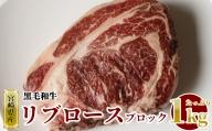 宮崎県産黒毛和牛リブロースブロック1kg