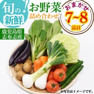 a0-142 国産おまかせ旬の新鮮お野菜詰め合わせセット7~8品目
