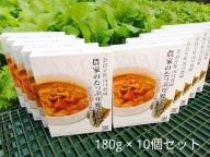 農家のたっぷり野菜カレー 10個/ 有機野菜 オーガニック 伝統野菜 レトルトカレー 奈良県 宇陀市