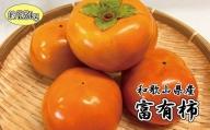 和歌山秋の味覚 富有柿 約7.5kg ※2021年10月下旬より順次発送(お届け日指定不可)