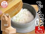青森県鰺ヶ沢町 2020年産米 つがるロマン 白米 5kg