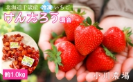 北海道千歳産 冷凍いちごけんたろう混合 約1.0kg