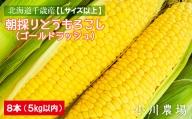 北海道千歳産【Lサイズ以上】朝採りとうもろこし(ゴールドラッシュ)8本 5kg以内