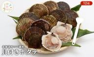 北海道サロマ湖産 貝付きホタテ12枚