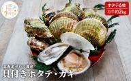 北海道サロマ湖産 貝付きホタテ6枚・カキ約2kg