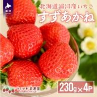 【先行受付中!】北海道浦河産 夏いちご 大粒完熟「すずあかね」250g×4P[B13-150]