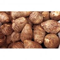 【2019年度分先行予約】特別栽培 減農薬 ねっとりうまい上庄里芋3kg