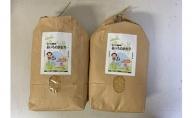 【定期便】あいちのかおり(玄米10kg(5kg×2袋)×3回・隔月) JAあいち尾東