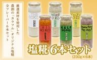 塩糀 6本セット