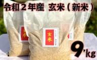 【四国一小さなまちのお米】令和2年産 玄米9kg